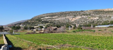 Trogir, Divulje, agricultural land with extra valuable soil, 80 m from the sea