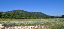 Land For Sale, Prgomet, Sinj-Zagora Area