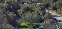 Building land plot 852 sq.m. in Vinisce